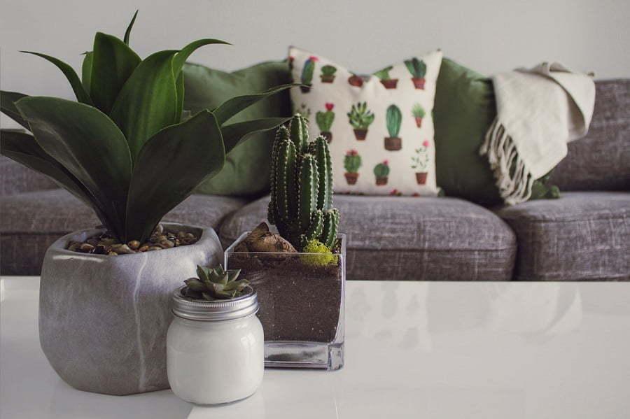 sofa decor