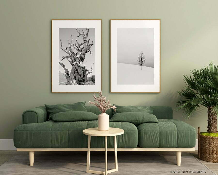sage green room